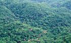 Ibama rejeita pedidos de flexibilização de regras ambientais feitos pelo Ministério da Economia