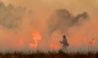 12% do Bioma Pantanal já foram consumidos pelas queimadas