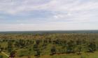 Proprietário rural é autuado em R$ 25 mil por desmatamento ilegal de vegetação nativa