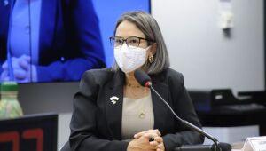 Parlamentares se preocupam com efeitos da pandemia na primeira infância