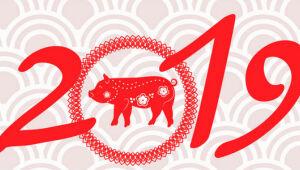 Horóscopo chinês 2019: veja como será o ano do porco