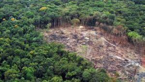 Bolsonaro vai criar conselho interministerial para conflitos de terras