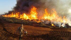Bombeiros ampliam combate a incêndios florestais em MS