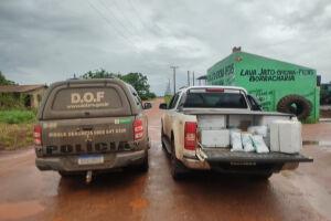 Camionete com 250 quilos de agrotóxicos foi apreendida pelo DOF