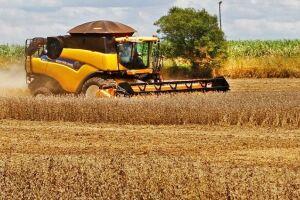 Com quase 10% colhida, safra da soja deve ultrapassar 11,2 milhões de toneladas