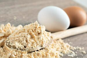 Mato Grosso do Sul terá a 1ª indústria de ovo orgânico em pó do Brasil