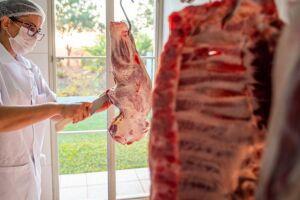 Em 5 meses, MS exporta 7,5 mil toneladas de carne suína e bate recorde em volume comercializado
