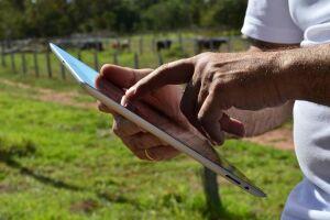 Estratégia e inovação são chaves para a evolução do agro