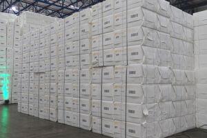 Soja e celulose são os destaques do aumento de 36,1% da balança comercial no primeiro semestre