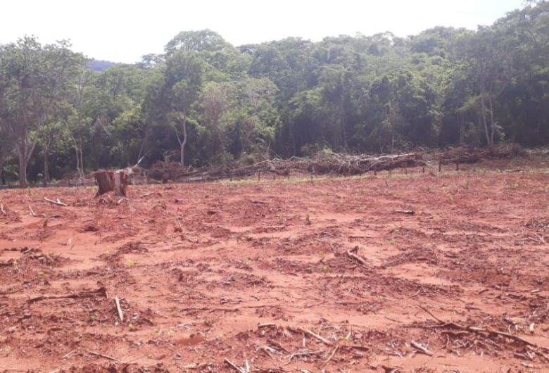 PMA de Corumbá autua infrator por desmatamento ilegal em propriedade à margem da Estrada Parque no Pantanal