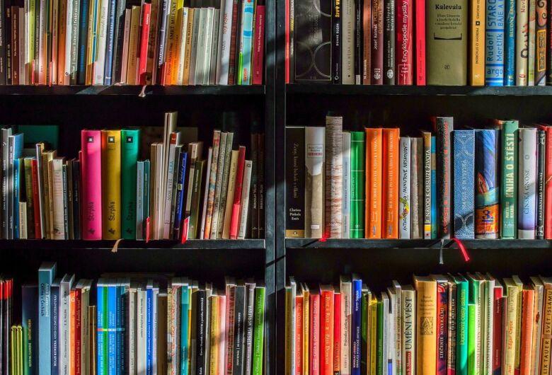 Dia do Leitor: falta de acessibilidade é desafio para formar leitores