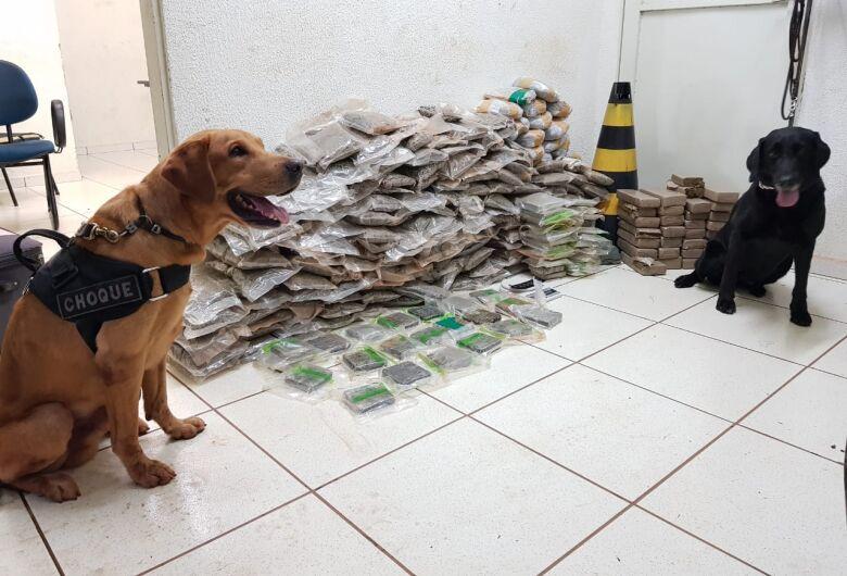 Polícia Militar apreende mais de 66 kg de drogas no Terminal Rodoviário de Campo Grande
