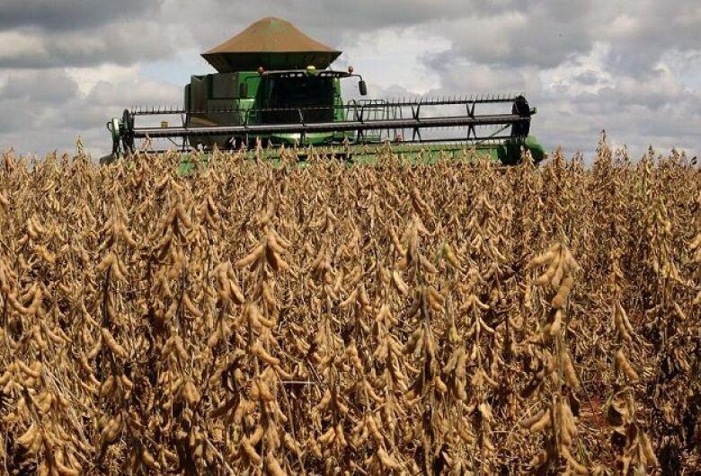 Com atraso, Mato Grosso do Sul começa a colher mais uma safra recorde de soja