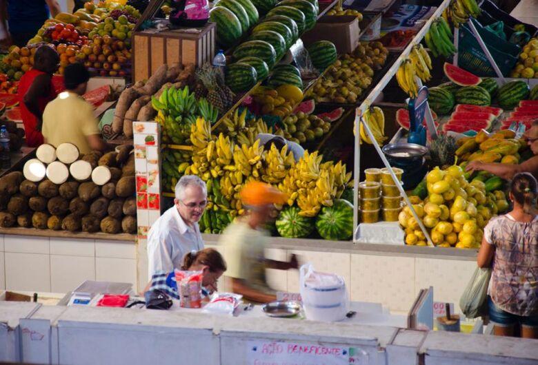 Seminário on-line discute sistemas alimentares circulares no Brasil