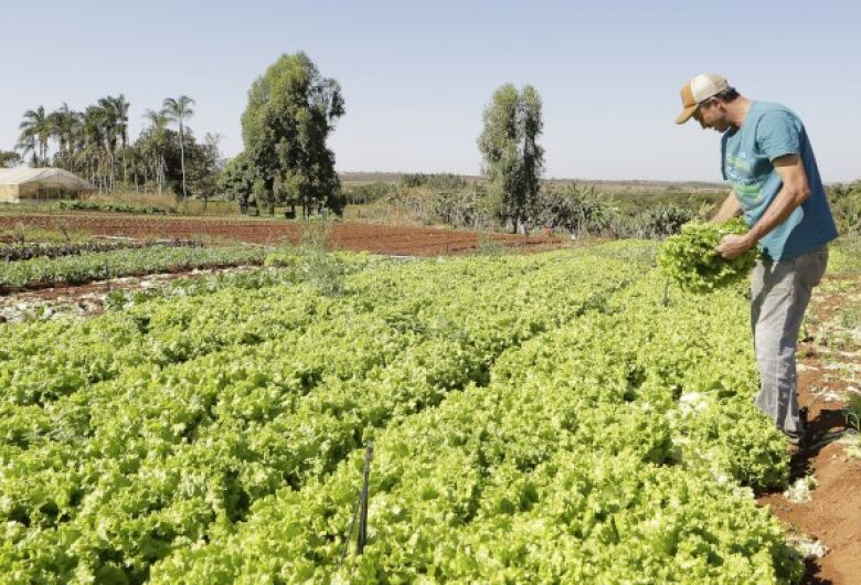 Investimento adicional no Pronaf pode chegar a R$ 2 bilhões