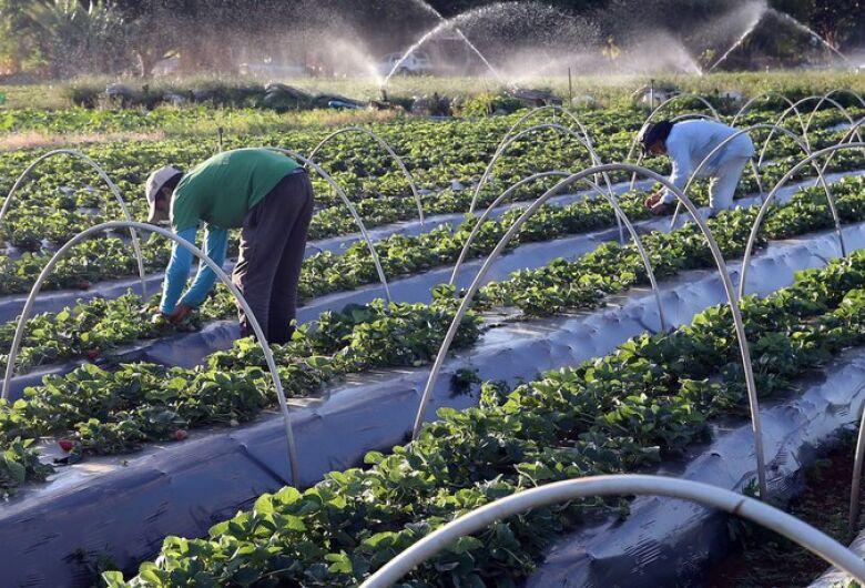 Produção sustentável tem crescimento no país