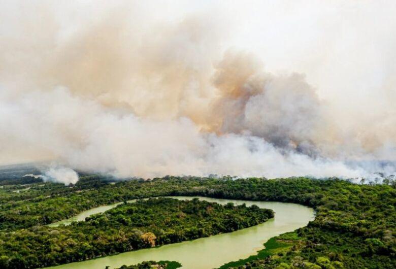 Quase 60% dos focos de incêndios no Pantanal têm ligação agrícola
