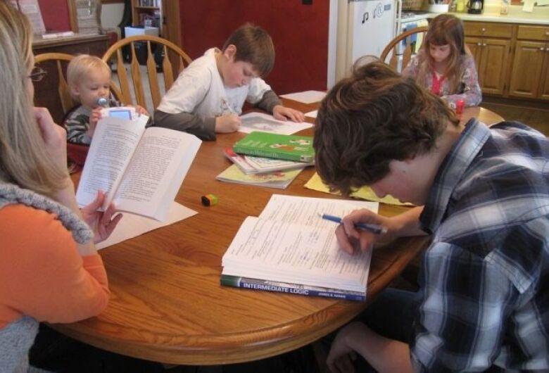 Especialistas alertam para possíveis problemas da educação domiciliar