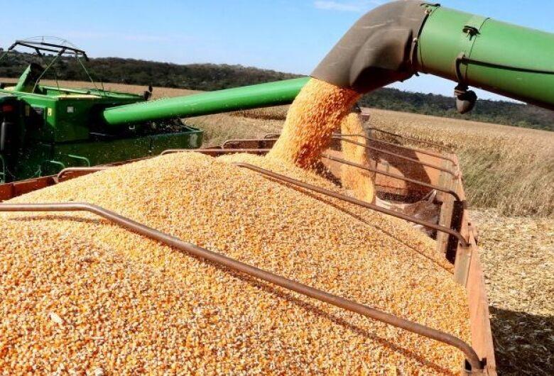 MS colhe 13 milhões de toneladas de soja e bate recorde de produção