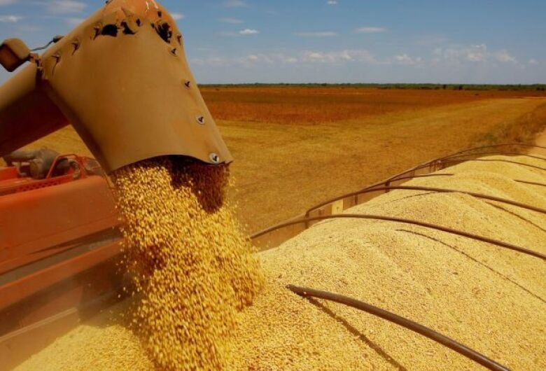 Exportação da soja do MS alcança 654 mil toneladas em março