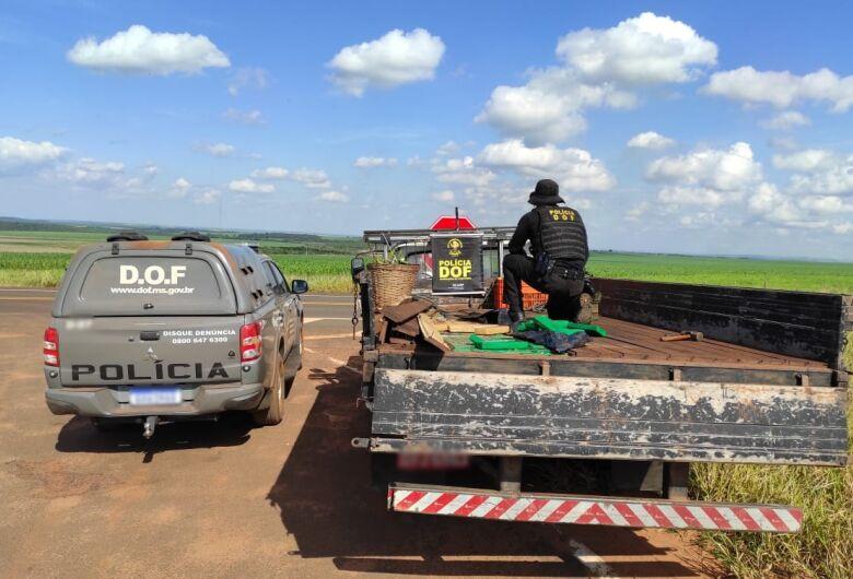 DOF apreende caminhonete que seguia para SP com mais de meia tonelada de droga