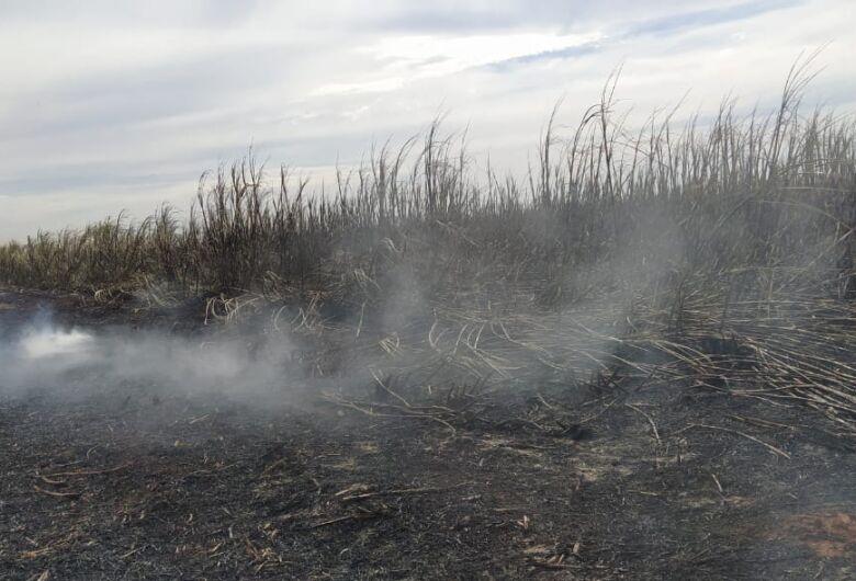 PMA multa em mais de R$ 1 milhão empresa por incêndio ilegal em lavoura