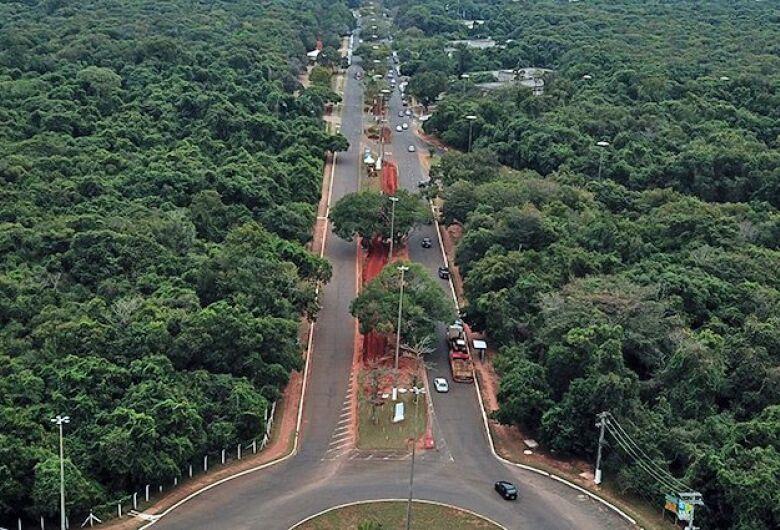 Com obra em andamento, revitalização do Parque dos Poderes terá foco na preservação da vegetação nativa
