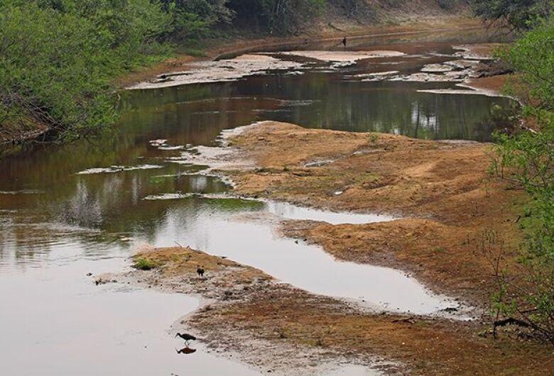 Com mais baixa estação chuvosa em 10 anos, Pantanal já tem 80% das propriedades afetadas