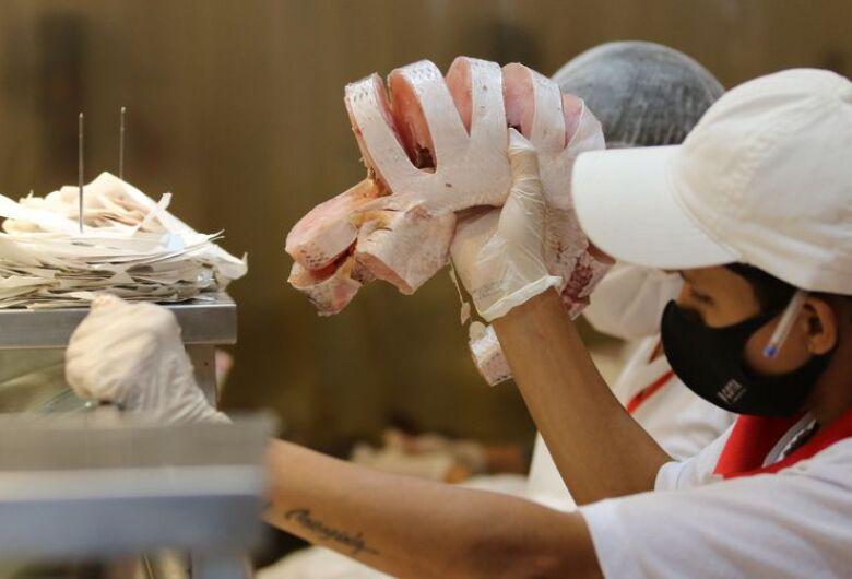 Valor de produção dos principais produtos pecuários atinge R$ 75,5 bi