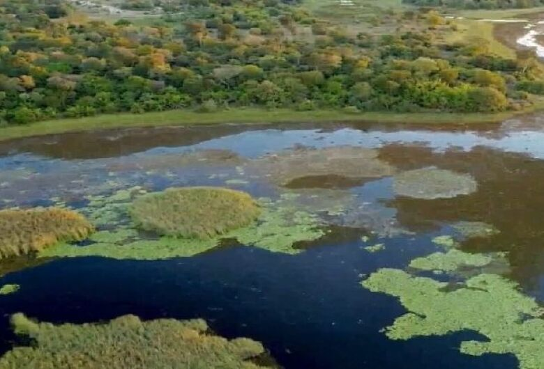 Semagro, Imasul e Instituto Homem Pantaneiro garantem ações para proteger o Pantanal