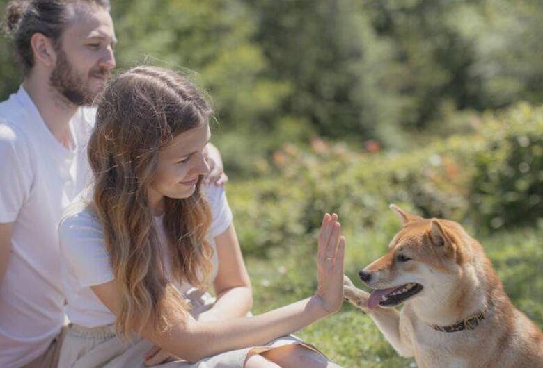 A importância do Pet na vida da família