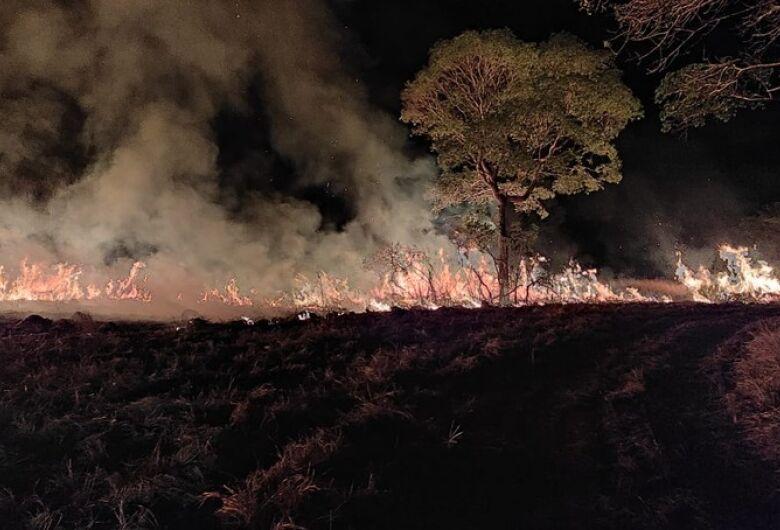 Pantanal de MS segue com focos de incêndio e fogo atinge fazenda onde há projeto com onças-pintadas