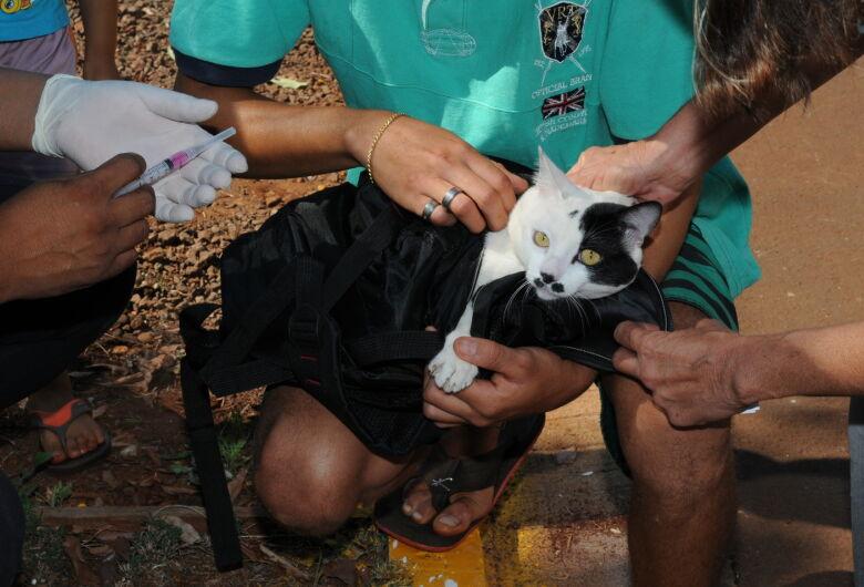 Vacinação antirrábica atende região do Novo Horizonte e Parque do Lago