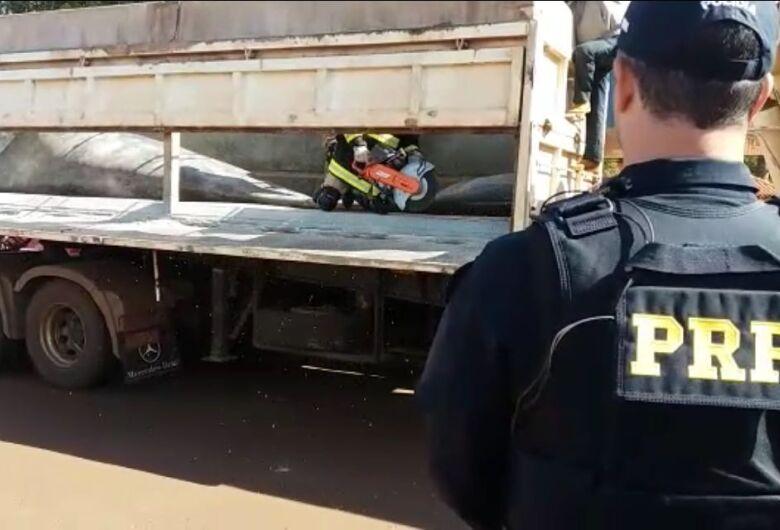 PRF apreende 927 quilos de maconha escondidos em fundo falso de carreta