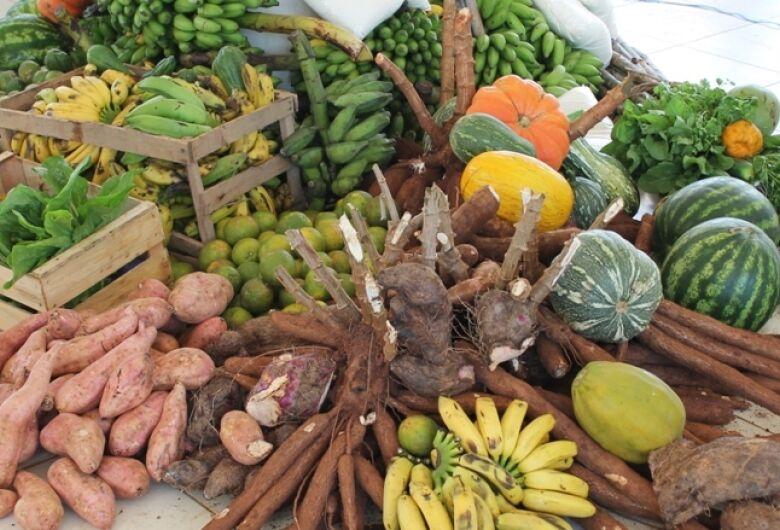 Encontro Nacional de cultivo de hortaliças começa nesta segunda-feira em Bonito