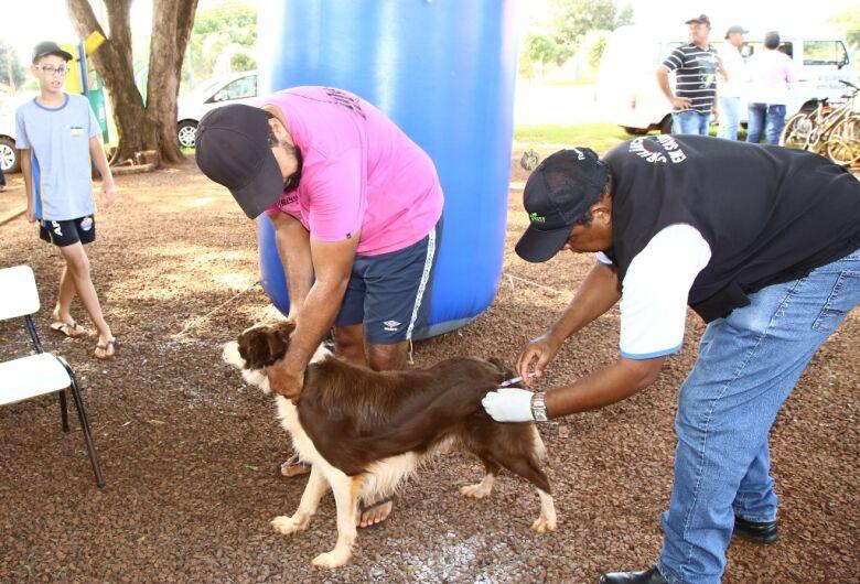 Vacinação antirrábica está no Grande Água Boa