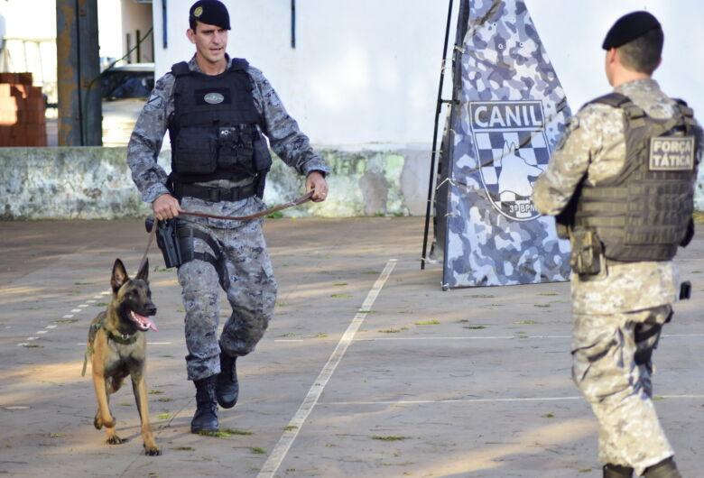 Com média anual de 6 toneladas de drogas apreendidas, Canil completa 10 anos e ganha mais 3 cães