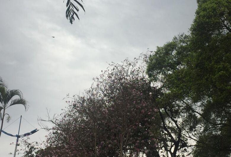 Primavera traz chuvas acima da média e calor também