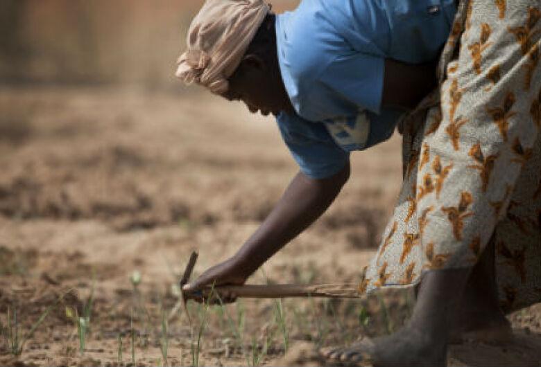 No Dia Mundia da Alimentação, ONU alerta para a fome no mundo