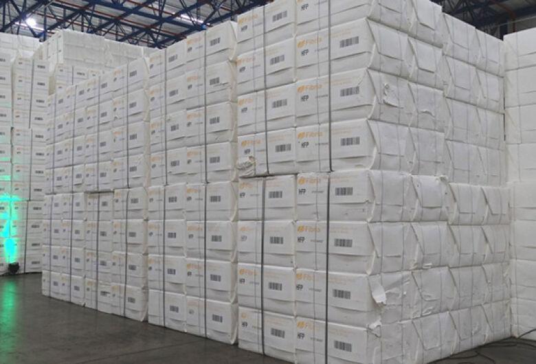 Agropecuária lidera aumento de 16,6% das exportações em outubro