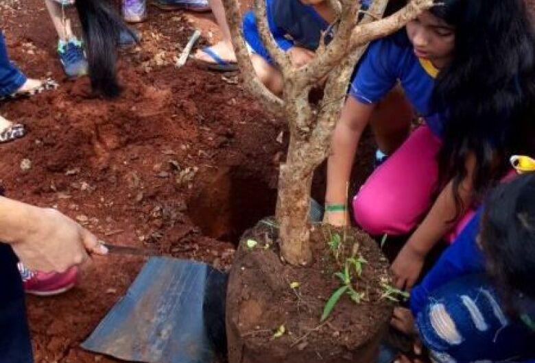 Projeto 'Pomar nas Escolas' inicia plantio de mudas nas escolas dos distritos