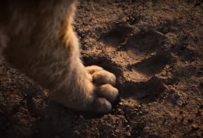 Disney divulga primeiro trailer de O Rei Leão, assista
