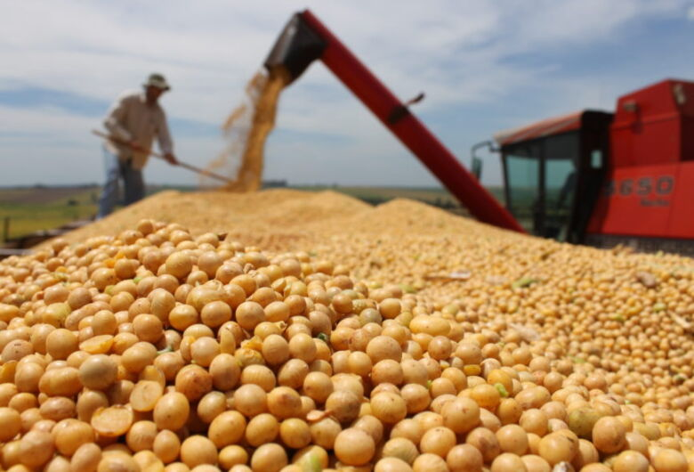 Área plantada de soja aumenta 140 mil hectares e bate recorde no Estado