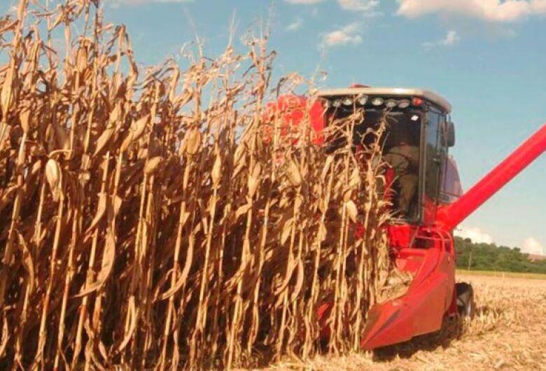 Safra de grãos deve atingir 238,4 milhões de toneladas, estima Conab