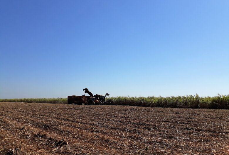 Produção de cana em MS atinge 45 milhões de toneladas e etanol supera 3 bilhões de litros