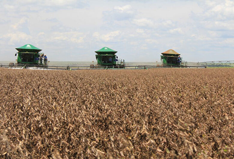 MS deve colher 9 milhões de toneladas de soja