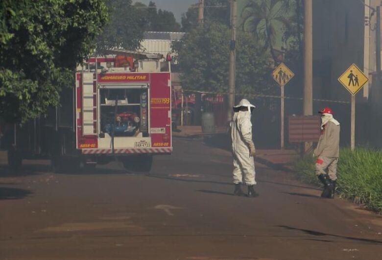 Ataque de abelhas deixa quatro pessoas feridas em cidade de MS
