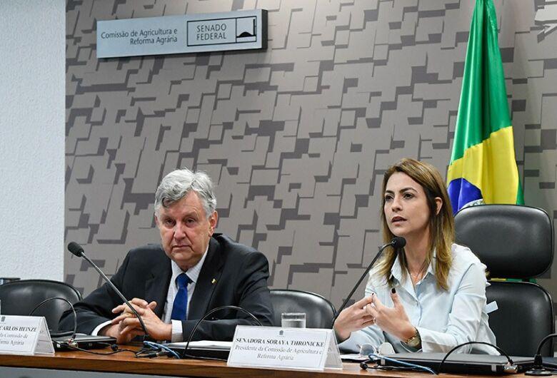 Douradense assume a presidência da Comissão de Agricultura e Reforma Agrária (CRA)
