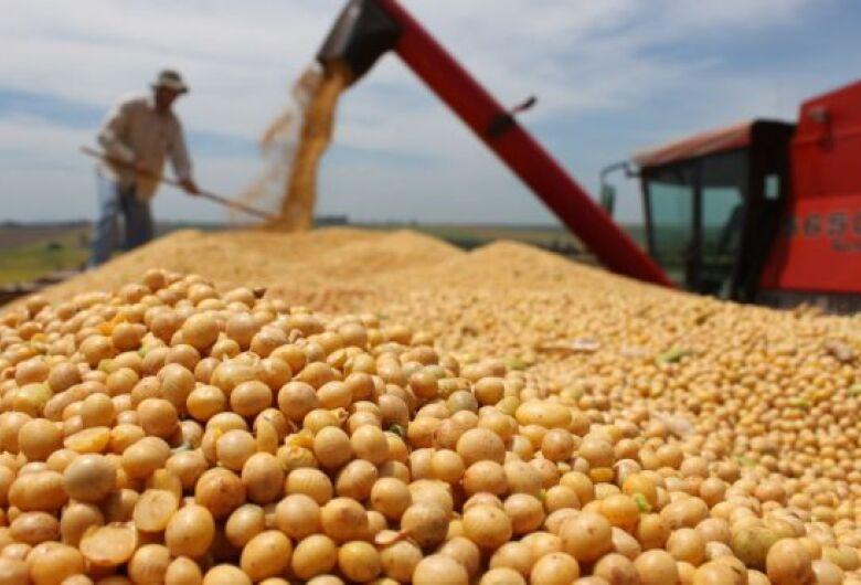 Mais de 70% das lavouras de soja já foram colhidas em MS