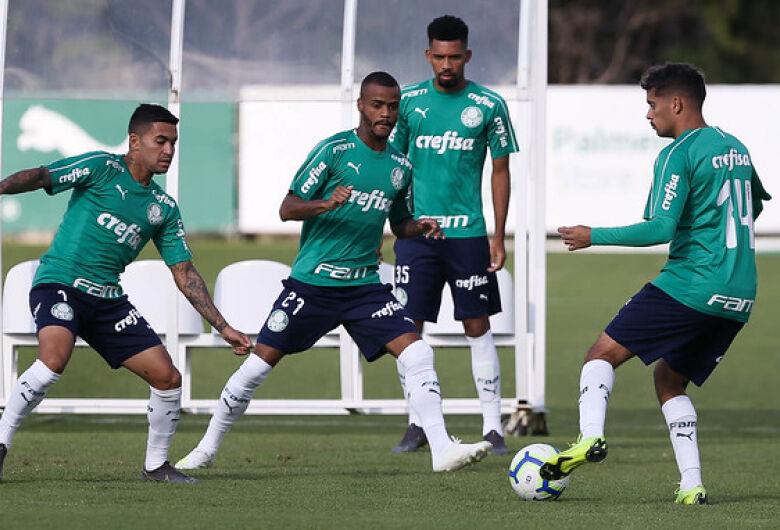 Para proteger liderança, Palmeiras visita o Botafogo pelo Brasileirão
